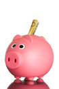 Pink piggy bank with australian dollars a piggybank in it on white Stock Images