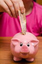 Pink piggy bank with euro note Royalty Free Stock Photo