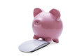 Pink piggy bank investing in savings online standing with its front legs on a modern white computer mouse on a white background Royalty Free Stock Photos