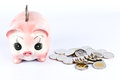 Pink piggy bank  and many coins. Stock Photos