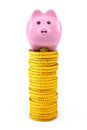 Pink piggy bank over golden dollar coin stacks on a white background Royalty Free Stock Image