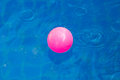 Pink plastic ball in pool , pool villa house Royalty Free Stock Photo