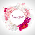 Pink red and white peony background luxurious with a round label Royalty Free Stock Photo