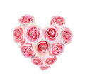 Pink rose arranged in heart shape isolated