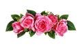 Pink rose flowers arc arrangement Royalty Free Stock Photo