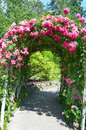 Pink rose garden archway beautiful covered over path Royalty Free Stock Photo