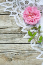Pink rose and lace on wood Stock Image