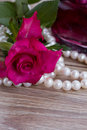 Pink rose pearl necklace parfume bottle wooden table Stock Images