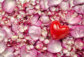 Pink rose petals background with heart Stock Photos