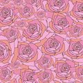 Pink rose shattered, floral pattern background Royalty Free Stock Photo
