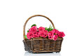 Pink roses in the basket isolated on white background Stock Photography