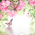 Pink roses bouquet of and butterfly floral background Royalty Free Stock Photography
