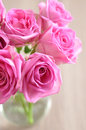 Pink roses bouquet of small Stock Photo