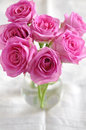 Pink roses bouquet of small Stock Images