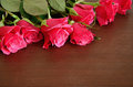 Pink roses on brown wooden background Stock Photography