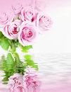 Pink roses in flood Royalty Free Stock Photo