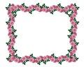 Pink roses garland border Stock Photo