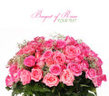 Pink roses huge bouquet isolated on white background with space for the text Stock Photos