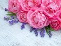 Pink Roses And Lavender Bouque...