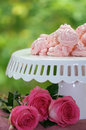Pink roses and meringues bright by cake stand with handmade green background for copy space Stock Images
