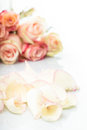 Pink roses petals Royalty Free Stock Photo