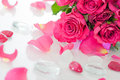 Pink roses with stones on white Stock Photo
