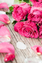 Pink roses with stones on wood Stock Photo