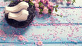 Pink  sakura flowers and two white wooden decorative birds in ne Royalty Free Stock Photo