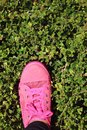 Pink sneakers accessories and wearable sneakers Stock Image