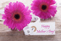 Pink Spring Gerbera, Label, Text Happy Mothers Day