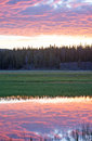 Pink Sunrise cloudscape over Pelican Creek in Yellowstone National Park in Wyoming Royalty Free Stock Photo