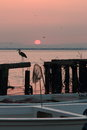 Pink sunrise the over the water area of the harbor of the persian gulf in the old town area the disk of the sun appears from Stock Photos