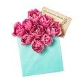 Pink tulip flowers envelope vintage postcard