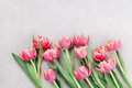 Pink Tulip Flowers For Spring ...