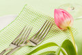 Pink tulip laying across green checkered napkin two forks decorate pretty spring table setting Royalty Free Stock Images
