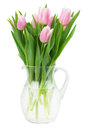 Pink tulips bouquet in vase of isolated on white background Stock Photos