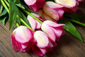 Pink tulips bouquet of on wood Royalty Free Stock Images