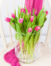 Pink tulips bunch of in glass vase Royalty Free Stock Photography