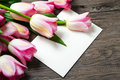 Pink tulips and card bouquet of postcard on wood Stock Images