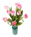 Pink tulips in gree vase isolated on white Royalty Free Stock Photos
