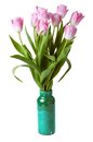 Pink tulips in gree vase isolated on a white Royalty Free Stock Photo
