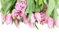 Pink Tulips And Hyacinth Flowe...