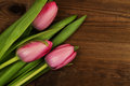 Pink tulips on a wooden background. Mother`s Day. Spring flowers Royalty Free Stock Photo