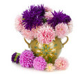 Pink and violet autumn asters in jug Royalty Free Stock Photo