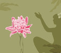 Pink water lily flower (lotus) and a female silhou Stock Images