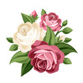 Pink And White Vintage Roses.