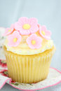 Pink and Yellow Cupcakes Stock Photography