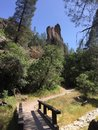 Pinnacles national park picnic and hiking area with moss covered trees and fence