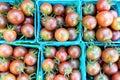 Organic black cherry tomatoes at a Farmer`s Market Royalty Free Stock Photo