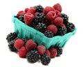 Pint of blackberries and raspberries Royalty Free Stock Photo